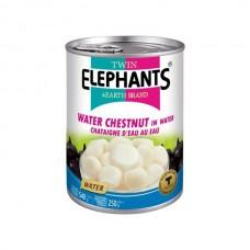 Water Chestnut 540g - Twin Elephants