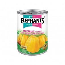 Twin Elephants - Jackfruit In Syrup 565g