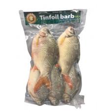 ASEAN SEAS - FROZEN TINFOIL BARD FISH 10X900G