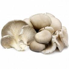 Oyster Mushroom (Hed Nang Fah) 200g