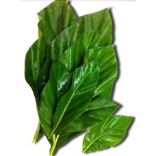 Bai Yor / Marinda Leaf 100g