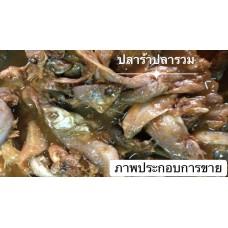 ZAAP INTER Plara  Nong Khun Nay Fermented Mixed Fish  1kg