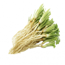 Coriander Root 100g