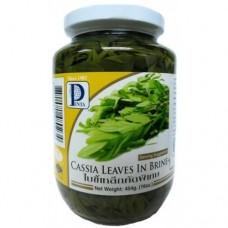 PENTA - Cassia Leaves In Brine 454g