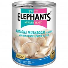 Twin Elephants - Abalone Mushroom In Brine 540g