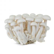 White Shimeji Mushroom 125g