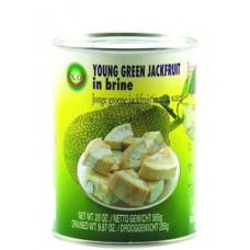 Young Green Jackfruit in Brine 565g-XO