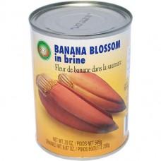 BANANA BLOSSOM IN BRINE 565G-XO