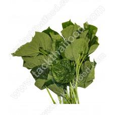 Wild Betel Leaf / Cha Plu Leaf 100g