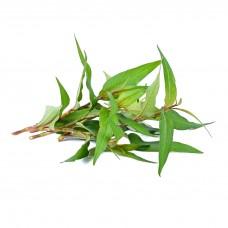 Vietnamese Coriander (Preaw Leaf)100g