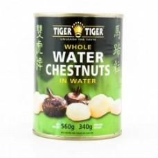 Water Chestnuts 560g - Tiger Tiger
