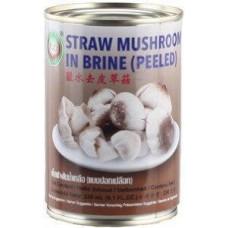 STRAW MUSHROOM IN BRINE(PEELED)425G-XO